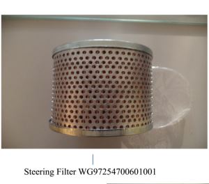 SINOTRUK HOWO SHACMAN Original Steering Filter WG9725470060+001